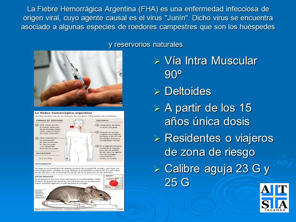 La Fiebre Hemorrágica Argentina (FHA) es una enfermedad infecciosa de origen viral, cuyo agente causal es el virus