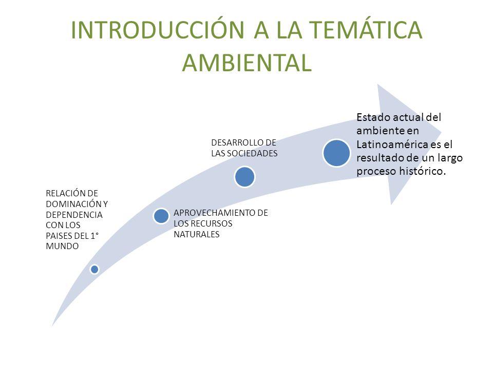 INTRODUCCIÓN A LA TEMÁTICA AMBIENTAL Las relaciones Internacionales han determinado las condiciones ambientales en Latinoamérica a lo largo de la historia: Pasivos Ambientales resultado de la minería Destrucción de selvas, bosques por la ganadería iniciada en la época colonial.