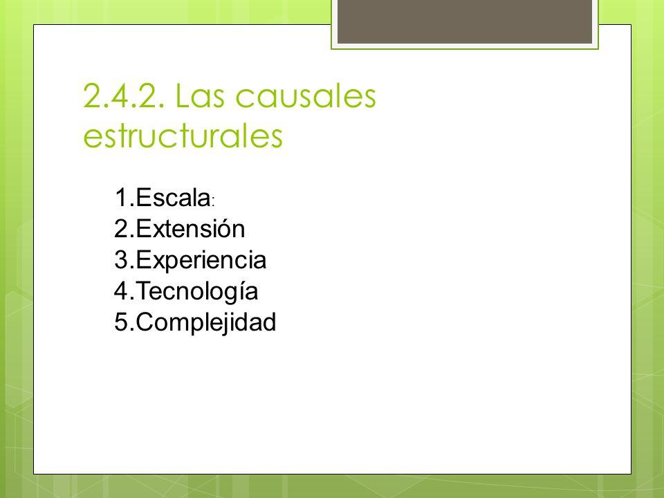 2.4.2. Las causales estructurales 1.Escala : 2.Extensión 3.Experiencia 4.Tecnología 5.Complejidad