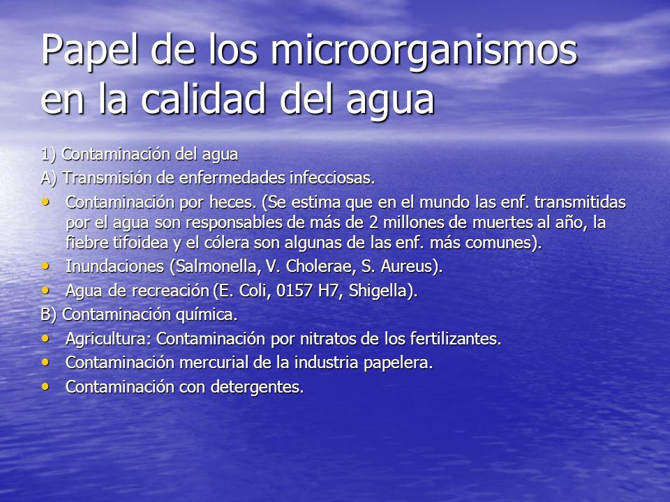 Papel de los microorganismos en la calidad del agua 1) Contaminación del agua A) Transmisión de enfermedades infecciosas. Contaminación por heces. (Se