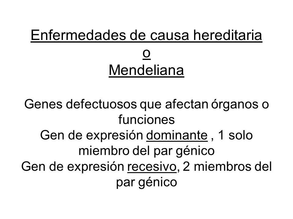 Enfermedades de causa hereditaria o Mendeliana Genes defectuosos que afectan órganos o funciones Gen de expresión dominante, 1 solo miembro del par génico Gen de expresión recesivo, 2 miembros del par génico