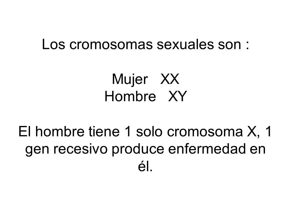 Los cromosomas sexuales son : Mujer XX Hombre XY El hombre tiene 1 solo cromosoma X, 1 gen recesivo produce enfermedad en él.