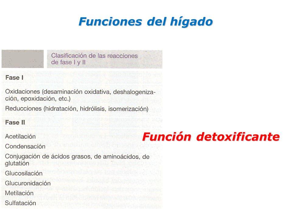 Funciones del hígado Función detoxificante