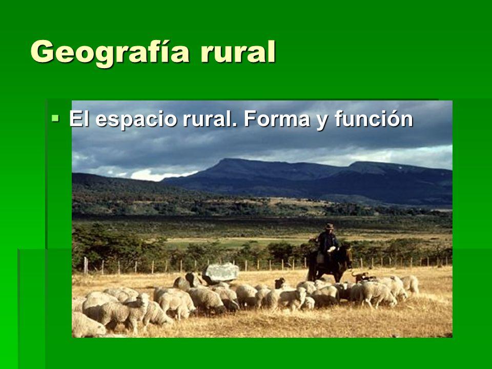 Geografía rural El espacio rural. Forma y función El espacio rural. Forma y función