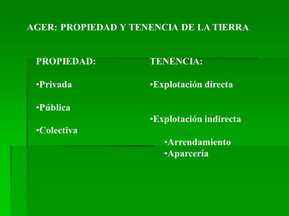 AGER: PROPIEDAD Y TENENCIA DE LA TIERRA PROPIEDAD: Privada Pública Colectiva TENENCIA: Explotación directa Explotación indirecta Arrendamiento Aparcer