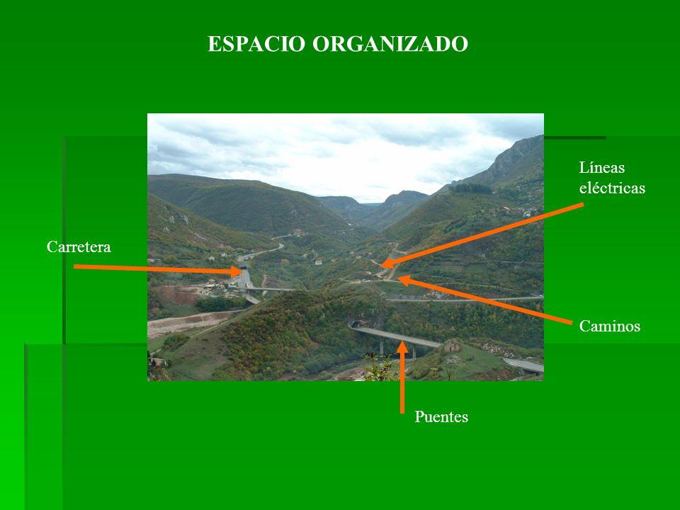 ESPACIO ORGANIZADO Carretera Caminos Puentes Líneas eléctricas
