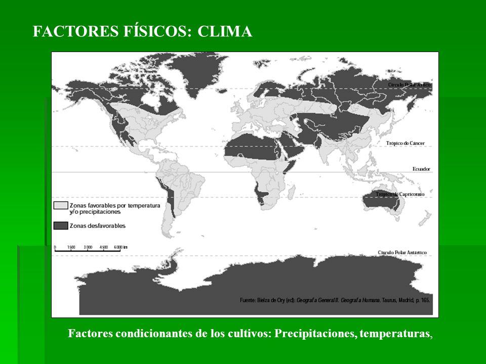 FACTORES FÍSICOS: CLIMA Factores condicionantes de los cultivos: Precipitaciones, temperaturas,