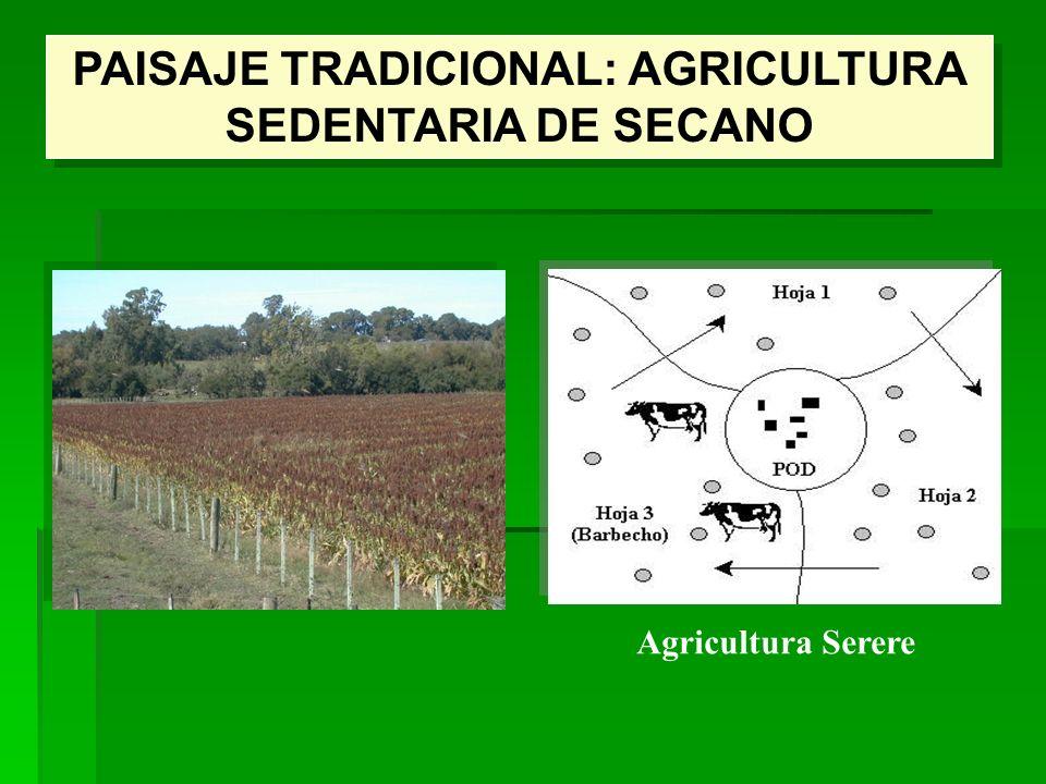 PAISAJE TRADICIONAL: AGRICULTURA SEDENTARIA DE SECANO Agricultura Serere