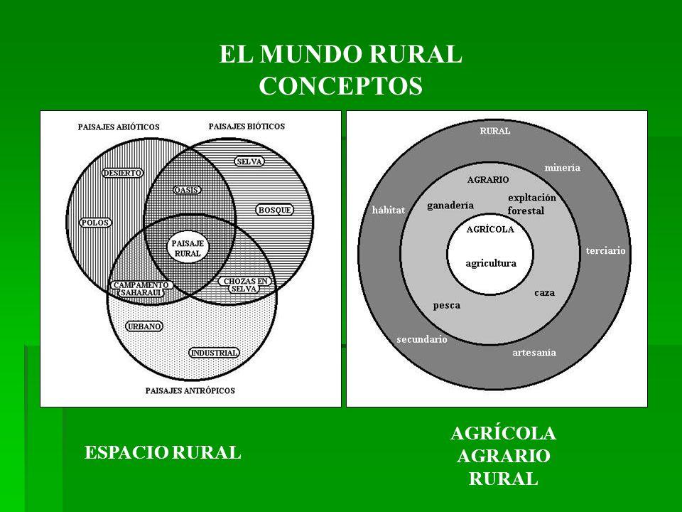 EL MUNDO RURAL CONCEPTOS ESPACIO RURAL AGRÍCOLA AGRARIO RURAL