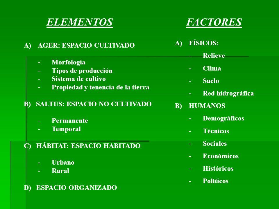 ELEMENTOSFACTORES A)AGER: ESPACIO CULTIVADO -Morfología -Tipos de producción -Sistema de cultivo -Propiedad y tenencia de la tierra B) SALTUS: ESPACIO