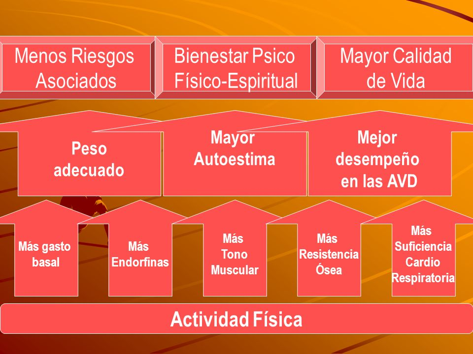 3º Etapa: Experimentación = Consumo repetido 4º Etapa: Consumo habitual 5º Etapa: