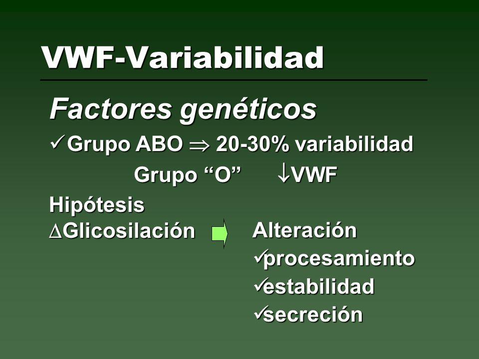 VWF-Variabilidad Factores genéticos Grupo ABO 20-30% variabilidad Grupo ABO 20-30% variabilidad Grupo O VWF Hipótesis Glicosilación Glicosilación Alte