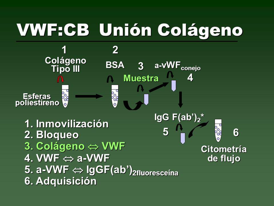 VWF:CBUnión Colágeno Colágeno Tipo III BSA Muestra a- vWF conejo IgG F(ab) 2 * Citometría de flujo 1. Inmovilización 1 2 5 6 4 3 2. Bloqueo 3. Colágen