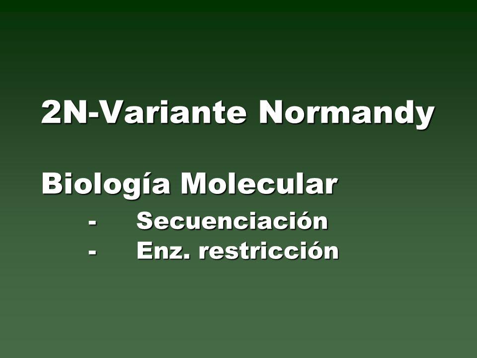 2N-Variante Normandy Biología Molecular -Secuenciación -Enz. restricción