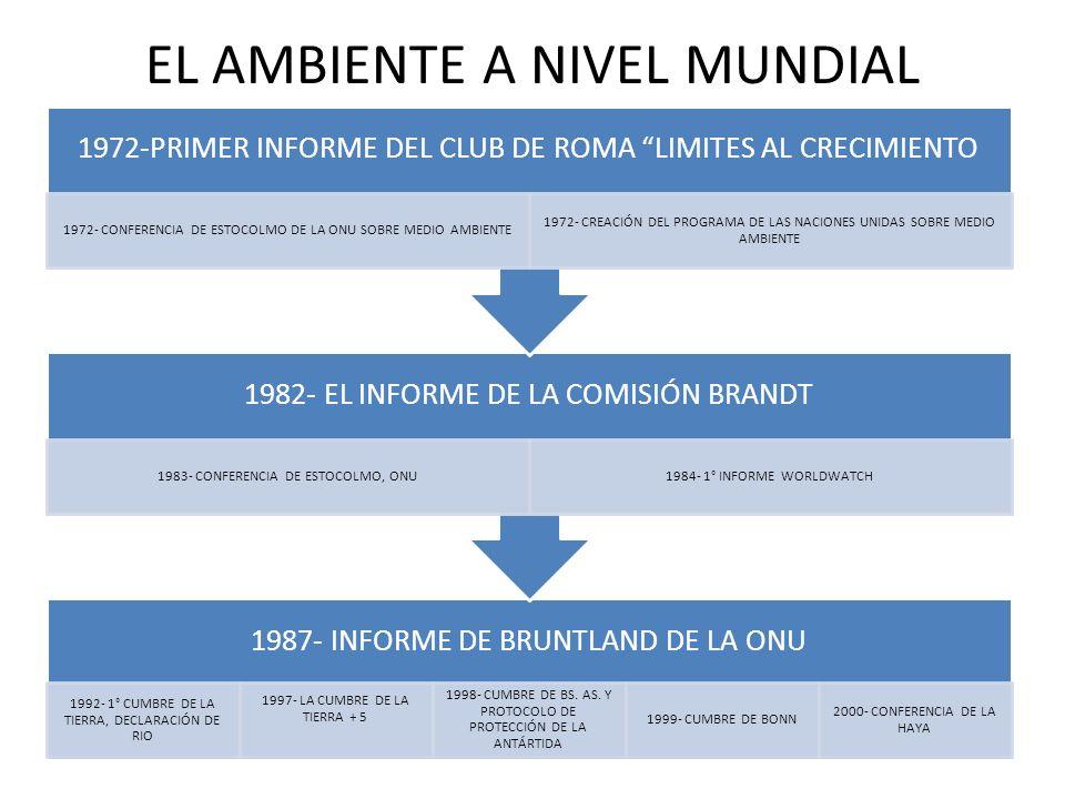EL AMBIENTE A NIVEL MUNDIAL 1987- INFORME DE BRUNTLAND DE LA ONU 1992- 1° CUMBRE DE LA TIERRA, DECLARACIÓN DE RIO 1997- LA CUMBRE DE LA TIERRA + 5 199
