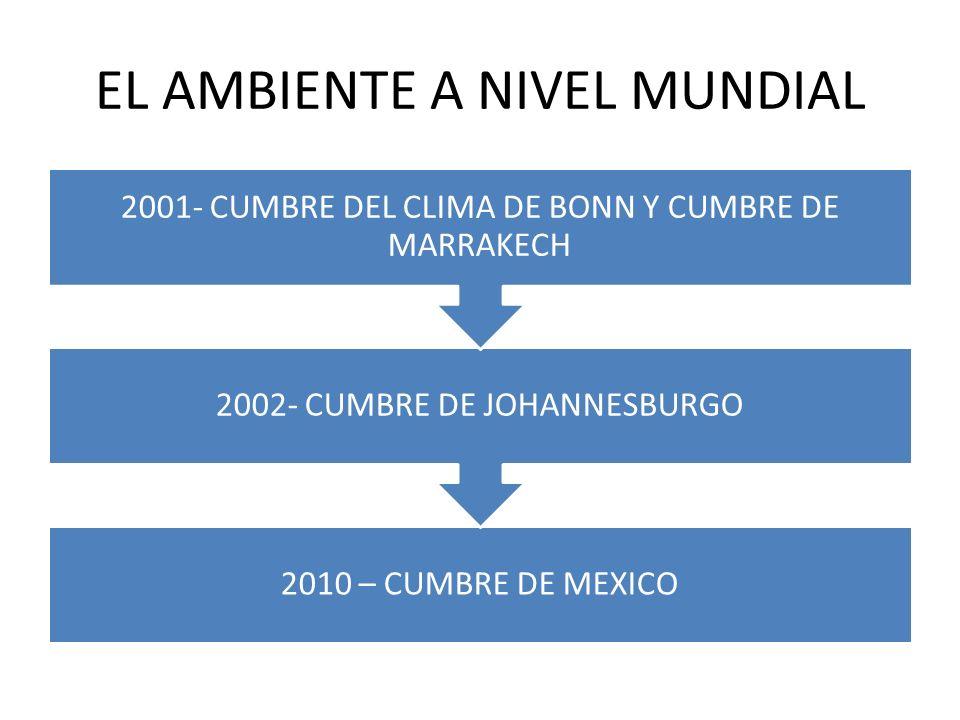 EL AMBIENTE A NIVEL MUNDIAL 2010 – CUMBRE DE MEXICO 2002- CUMBRE DE JOHANNESBURGO 2001- CUMBRE DEL CLIMA DE BONN Y CUMBRE DE MARRAKECH