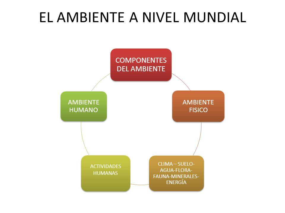 EL AMBIENTE A NIVEL MUNDIAL COMPONENTES DEL AMBIENTE AMBIENTE FISICO CLIMA – SUELO- AGUA-FLORA- FAUNA-MINERALES- ENERGÍA ACTIVIDADES HUMANAS AMBIENTE