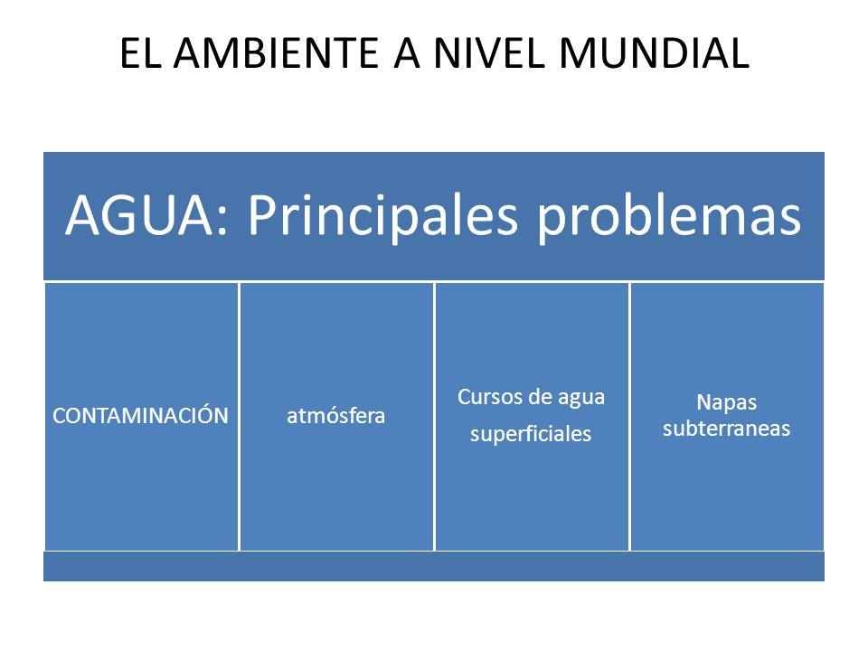 EL AMBIENTE A NIVEL MUNDIAL AGUA: Principales problemas CONTAMINACIÓNatmósfera Cursos de agua superficiales Napas subterraneas