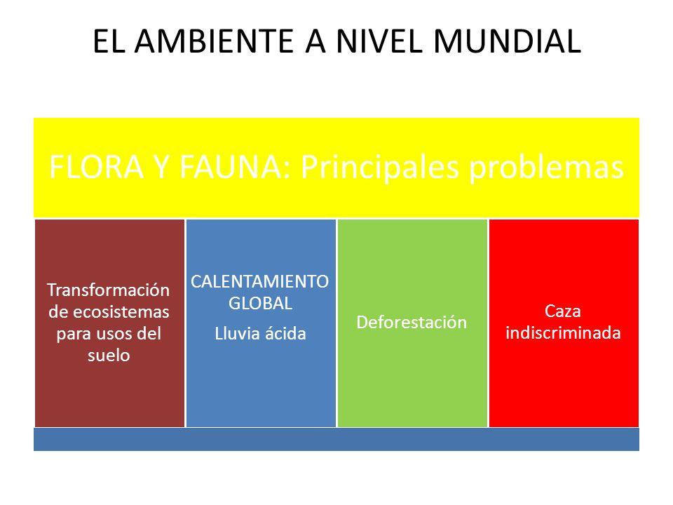 EL AMBIENTE A NIVEL MUNDIAL FLORA Y FAUNA: Principales problemas Transformación de ecosistemas para usos del suelo CALENTAMIENTO GLOBAL Lluvia ácida D