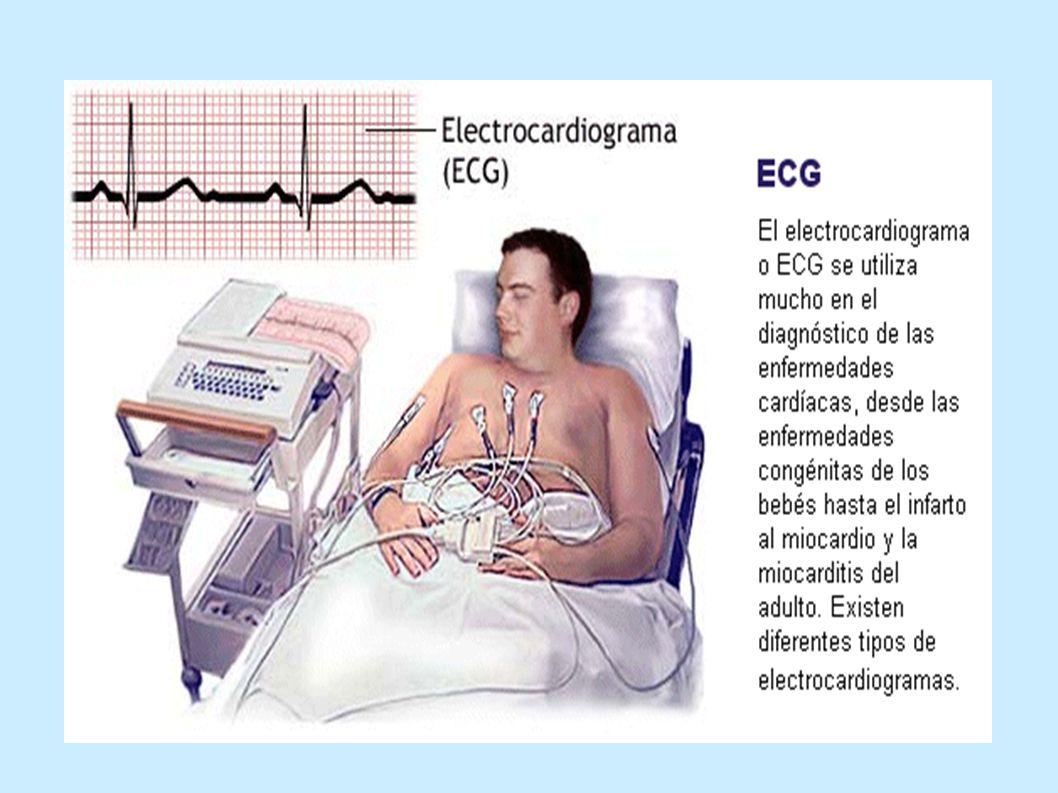 objetivos Fomentar la función circulatoria adecuada.