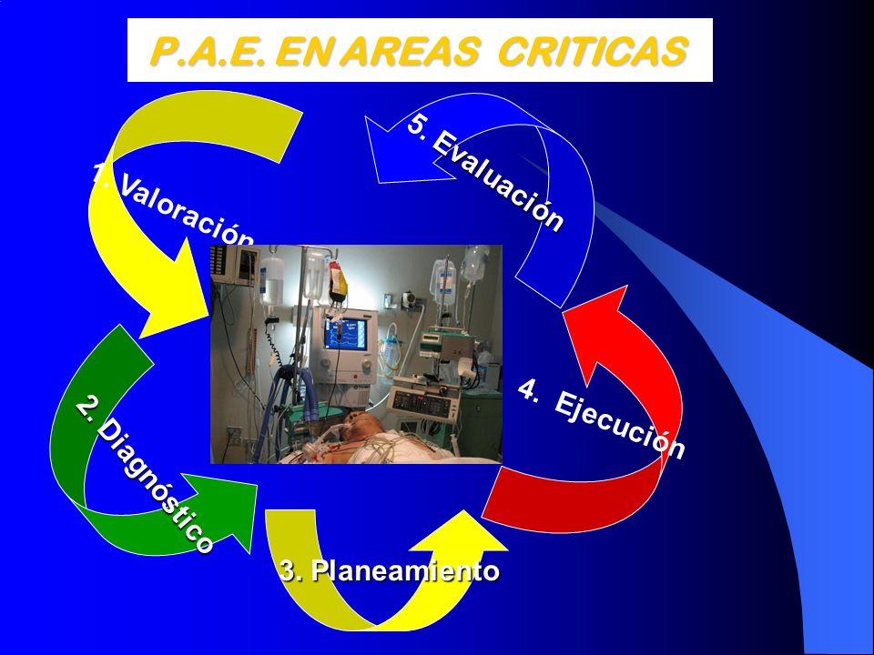 P.A.E. EN AREAS CRITICAS P.A.E. EN AREAS CRITICAS 1. Valoración 4. Ejecución Evaluación 5. Evaluación 2. Diagnóstico 3. Planeamiento