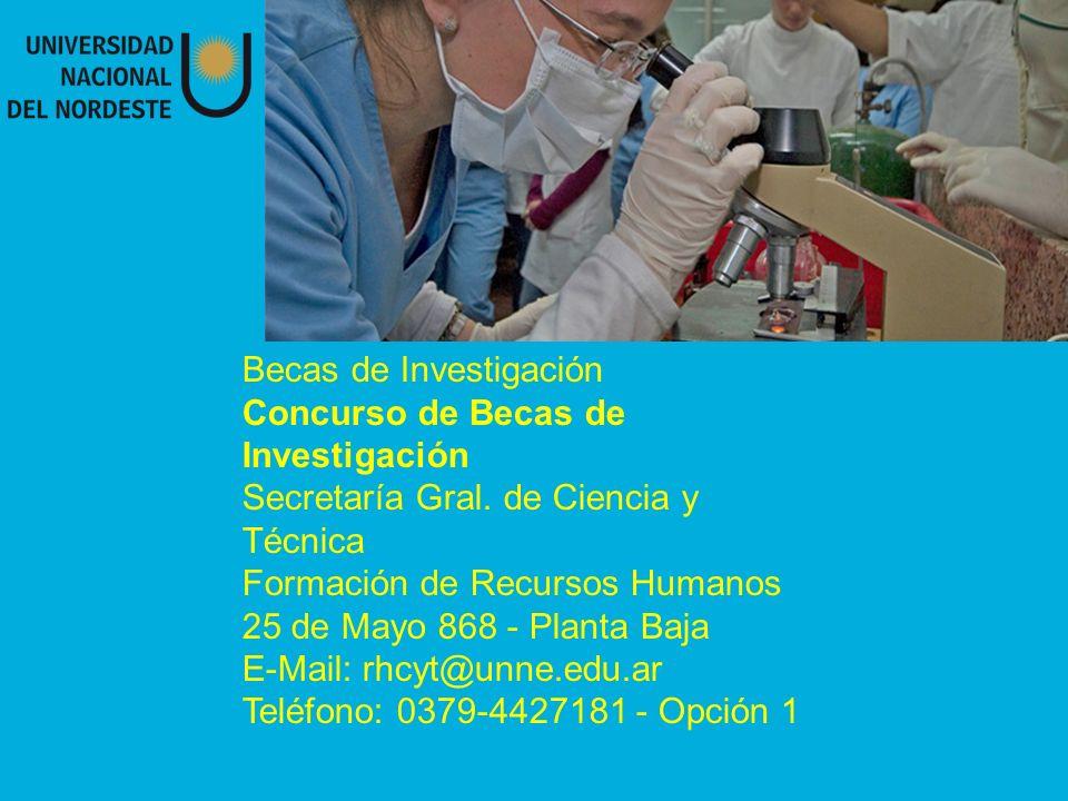 Becas de Investigación Concurso de Becas de Investigación Secretaría Gral.