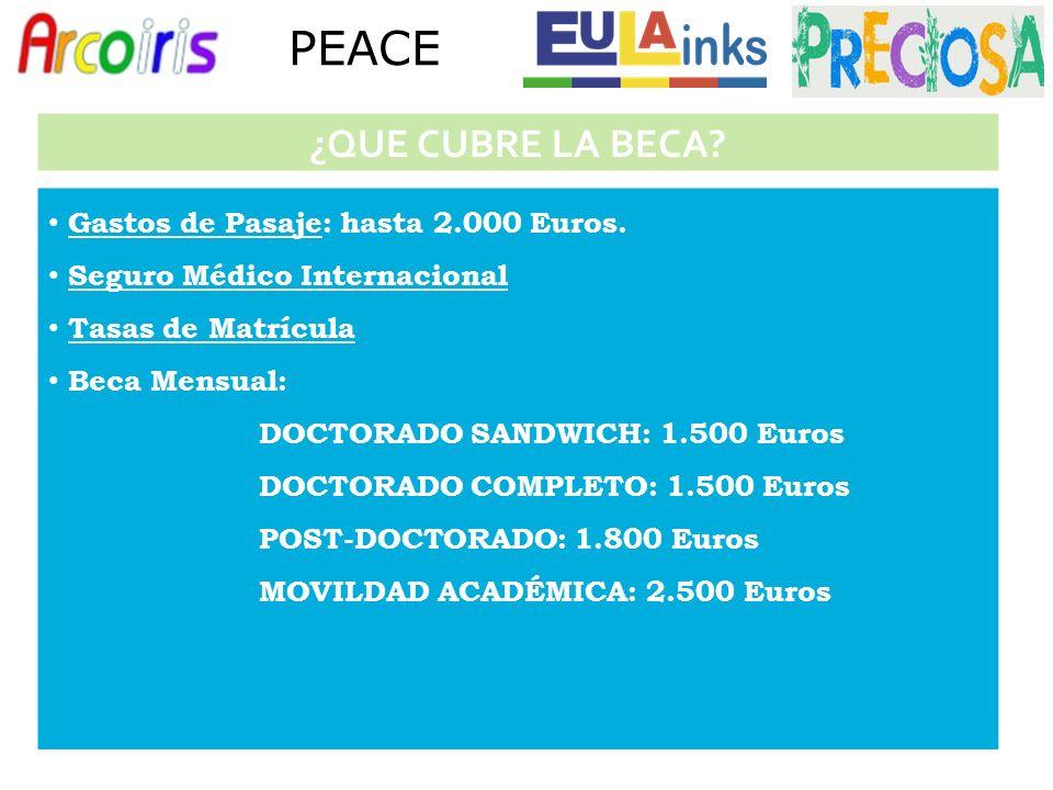 Gastos de Pasaje: hasta 2.000 Euros.
