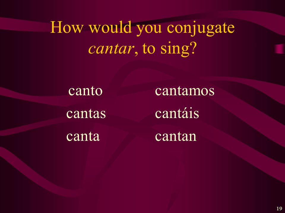 18 ¿Cuáles son las formas de…? Practicar- to practice Cantar- to sing Ayudar- to help Trabajar- to work Imaginar- to imagine