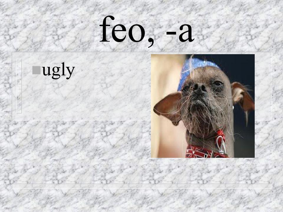 feo, -a n ugly