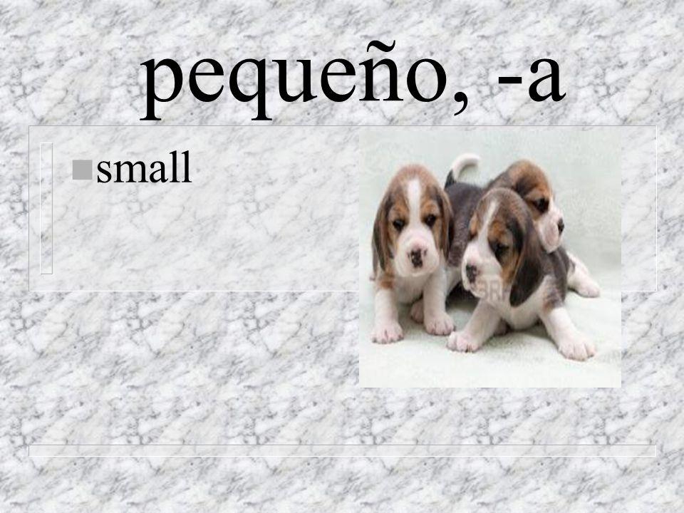 pequeño, -a n small