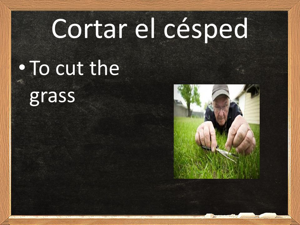 Cortar el césped To cut the grass