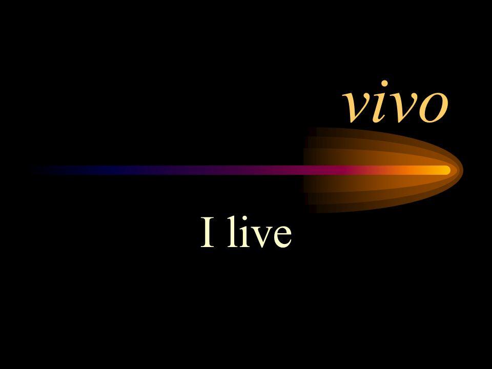 vivo I live