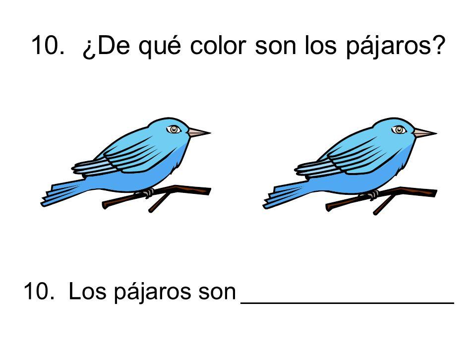 10. ¿De qué color son los pájaros 10. Los pájaros son ________________