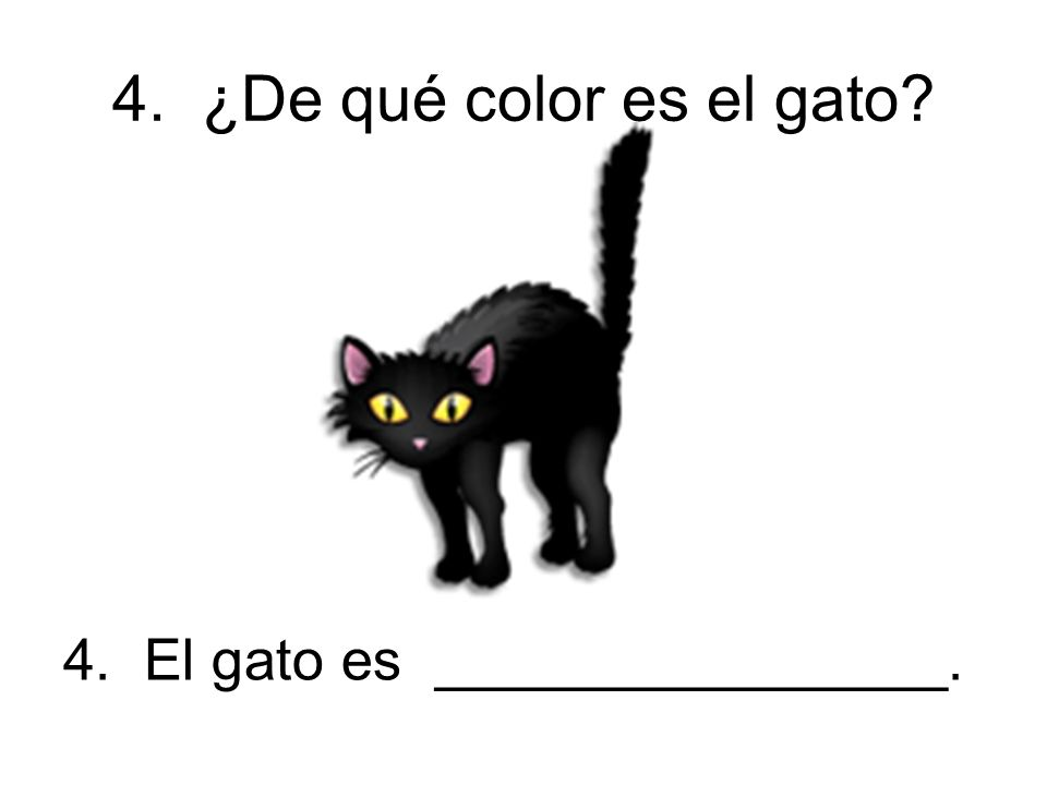 4. ¿De qué color es el gato 4. El gato es ________________.