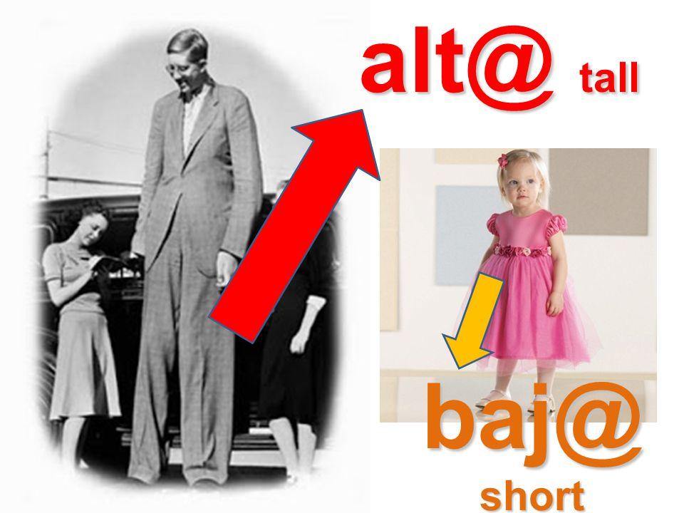 alt@ tall baj@short