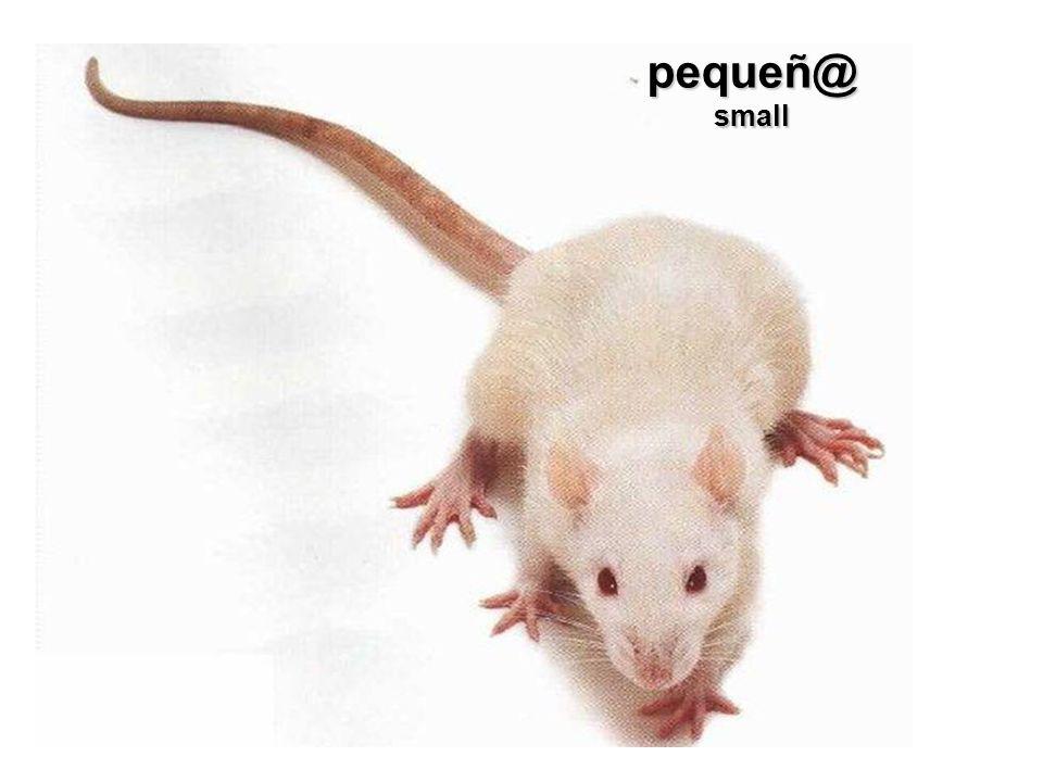 pequeñ@small