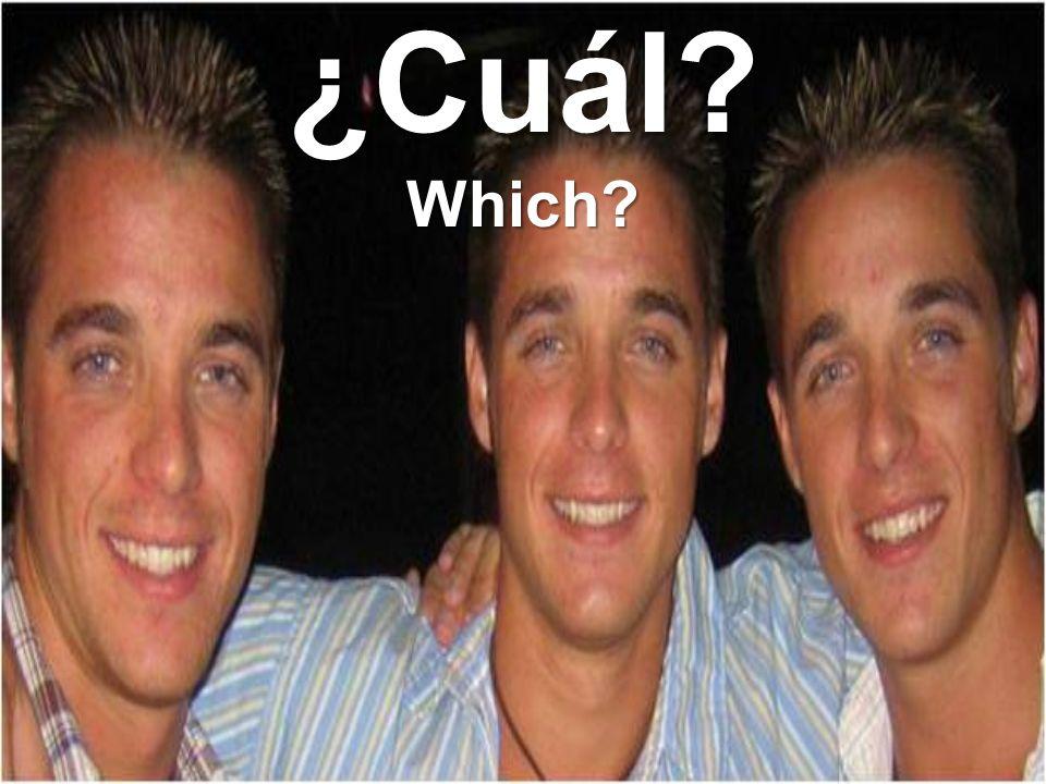 ¿Cuál?Which?