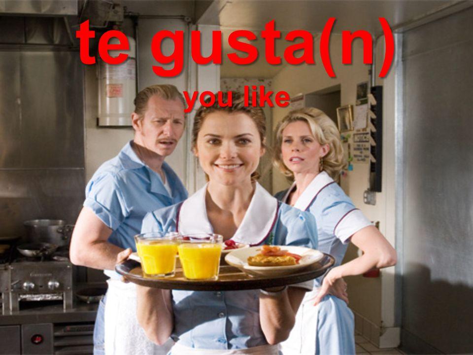 te gusta(n) you like
