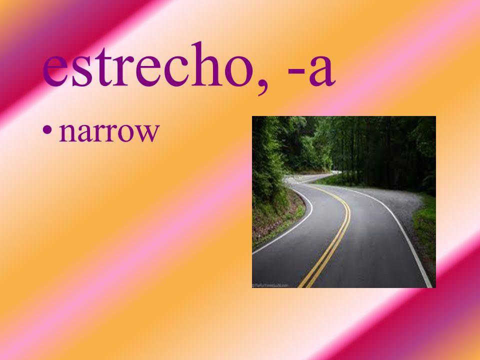estrecho, -a narrow