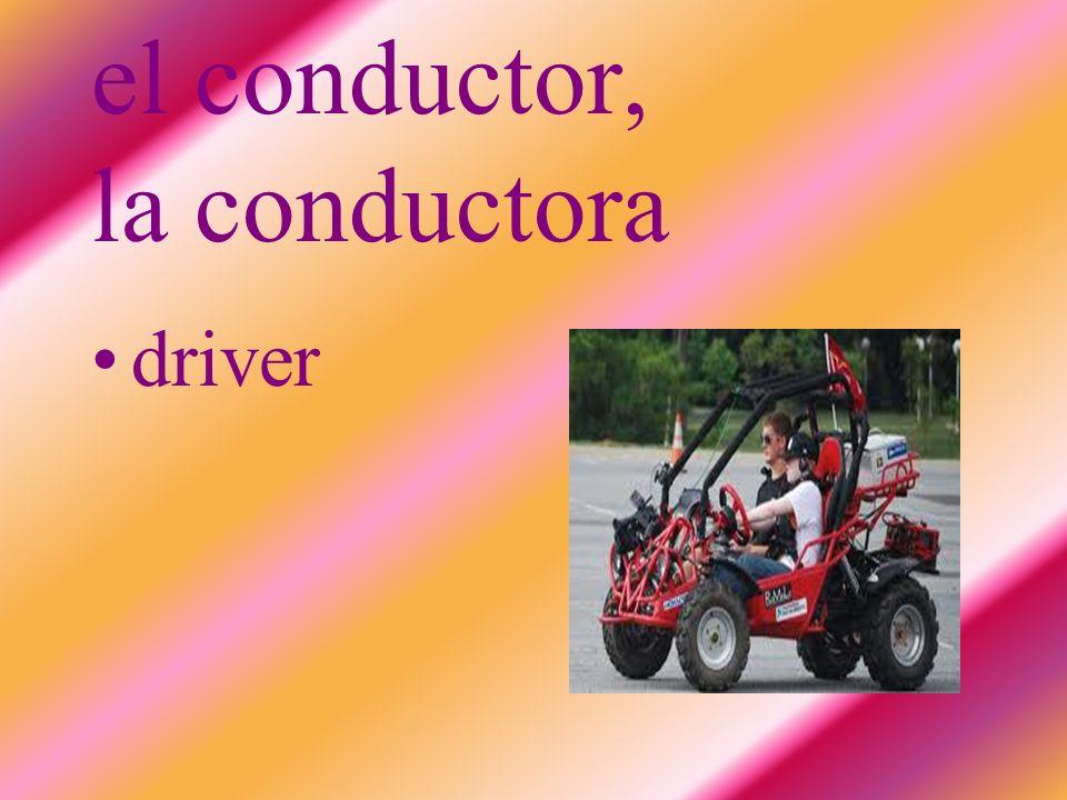 el conductor, la conductora driver