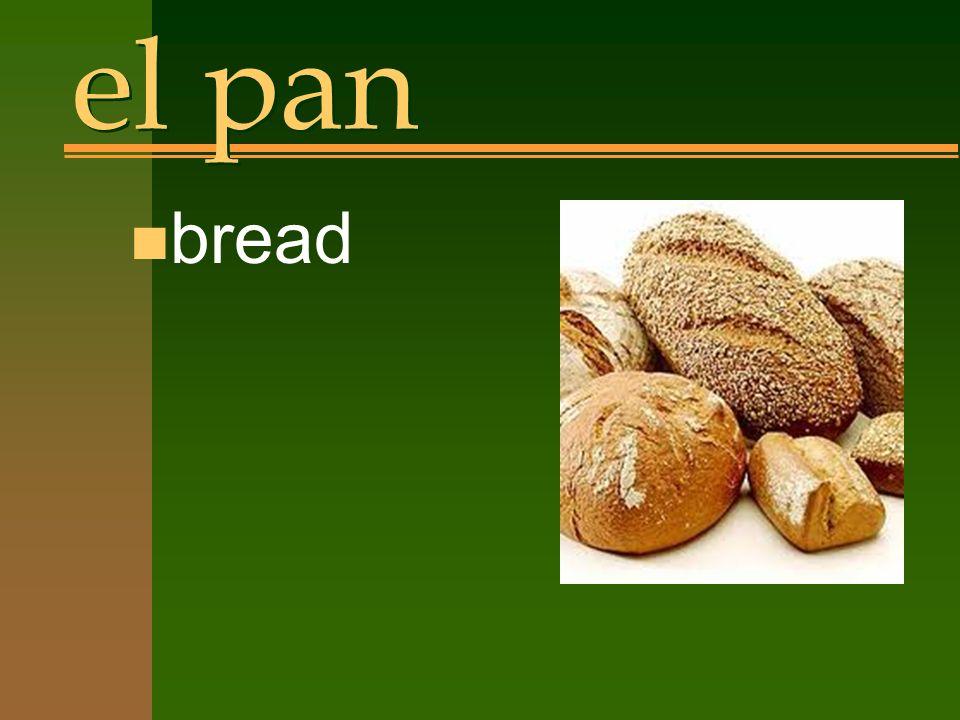 el pan n bread