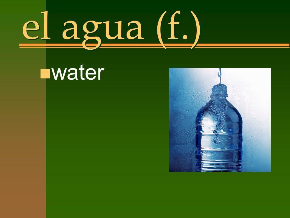 el agua (f.) n water