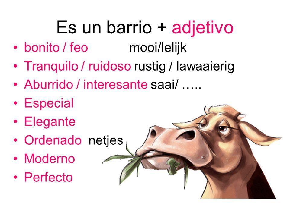 Es un barrio + adjetivo bonito / feomooi/lelijk Tranquilo / ruidoso rustig / lawaaierig Aburrido / interesante saai/ ….. Especial Elegante Ordenado ne
