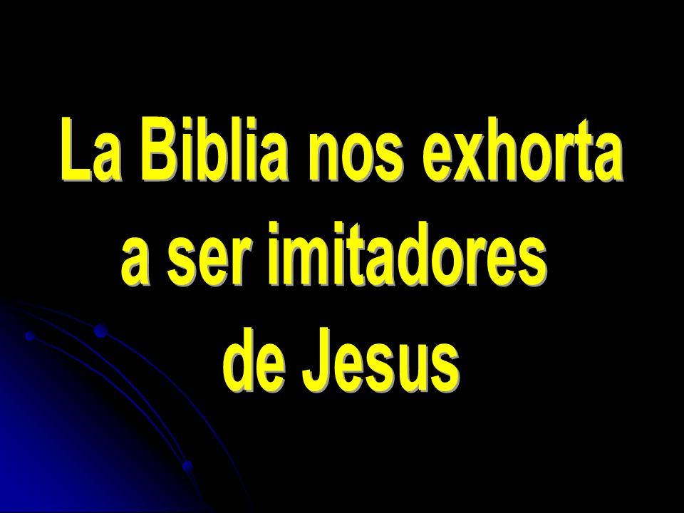 Pues para esto fuisteis llamados; porque también Cristo padeció por nosotros, dejándonos ejemplo, para que sigáis sus pisadas.