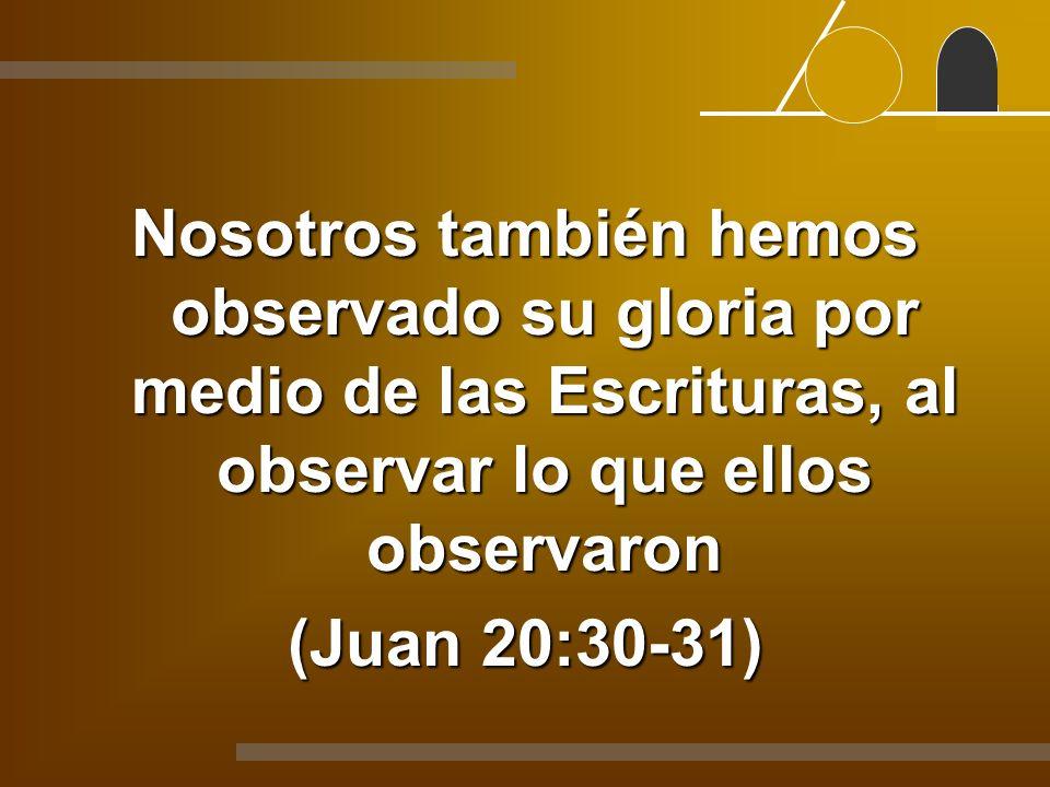 Nosotros también hemos observado su gloria por medio de las Escrituras, al observar lo que ellos observaron (Juan 20:30-31)