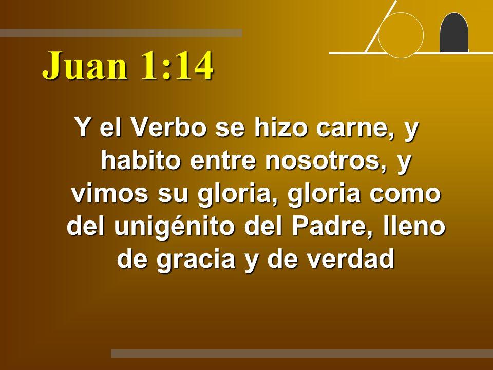 Juan 1:14 Y el Verbo se hizo carne, y habito entre nosotros, y vimos su gloria, gloria como del unigénito del Padre, lleno de gracia y de verdad