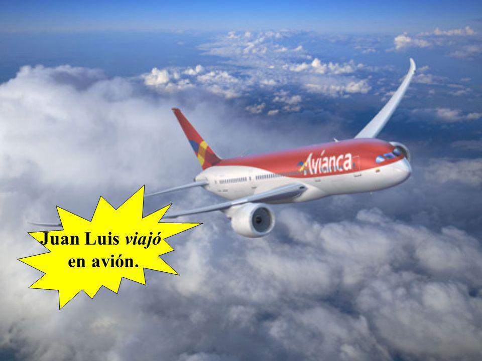 Juan Luis viajó en avión.