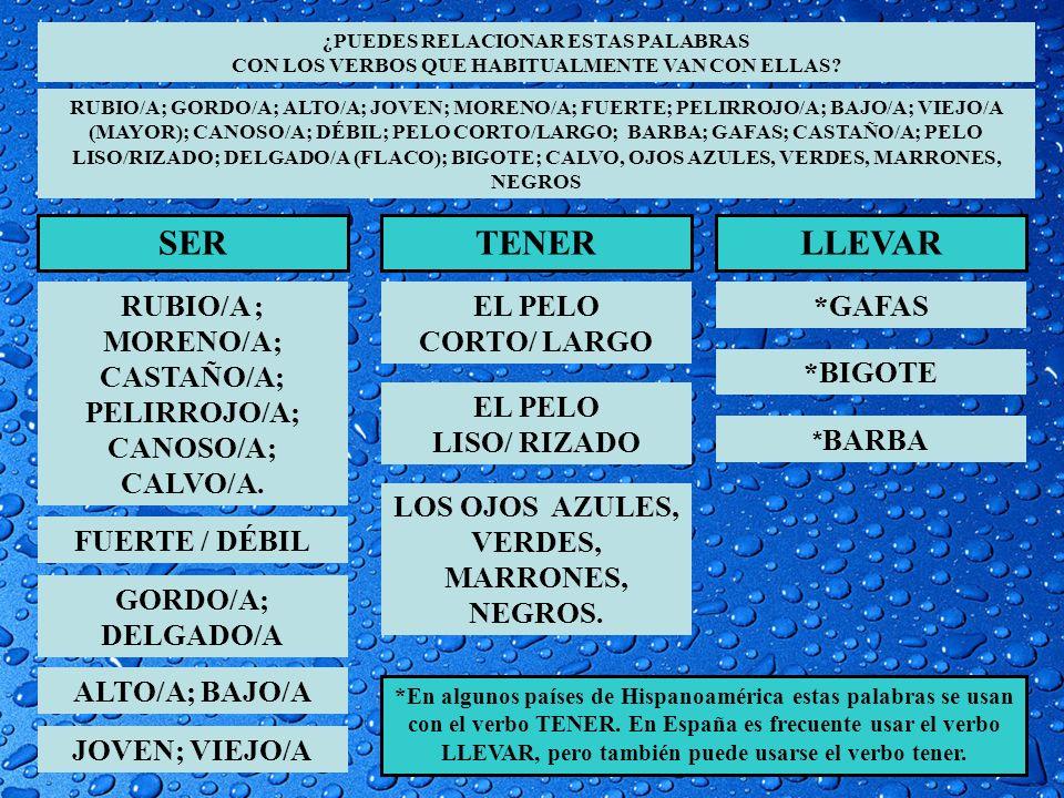 ¿PUEDES RELACIONAR ESTAS PALABRAS CON LOS VERBOS QUE HABITUALMENTE VAN CON ELLAS? RUBIO/A; GORDO/A; ALTO/A; JOVEN; MORENO/A; FUERTE; PELIRROJO/A; BAJO