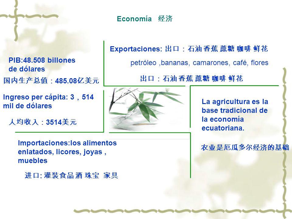 Economía Importaciones:los alimentos enlatados, licores, joyas, muebles Exportaciones: petróleo,bananas, camarones, café, flores La agricultura es la