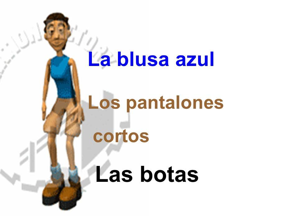 Los pantalones cortos Las botas La blusa azul